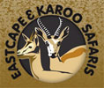 Eastcape and Karoo Safaris